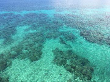 marine sanctuary in Bohol